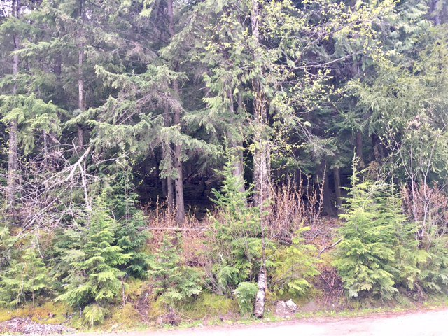 Photo 27: Photos: 3,4,6 Armstrong Road in Eagle Bay: Vacant Land for sale : MLS®# 10133907