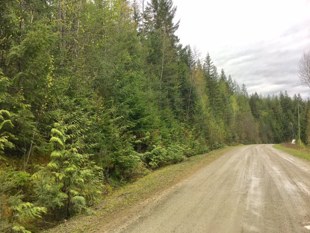 Photo 14: Photos: 3,4,6 Armstrong Road in Eagle Bay: Vacant Land for sale : MLS®# 10133907