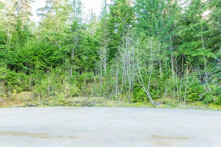 Photo 66: Photos: 3,4,6 Armstrong Road in Eagle Bay: Vacant Land for sale : MLS®# 10133907