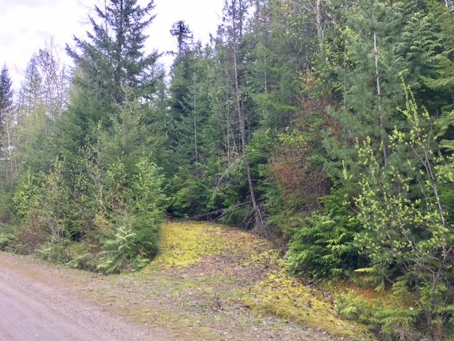 Photo 8: Photos: 3,4,6 Armstrong Road in Eagle Bay: Vacant Land for sale : MLS®# 10133907