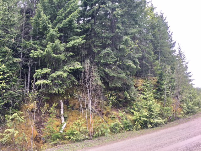 Photo 22: Photos: 3,4,6 Armstrong Road in Eagle Bay: Vacant Land for sale : MLS®# 10133907