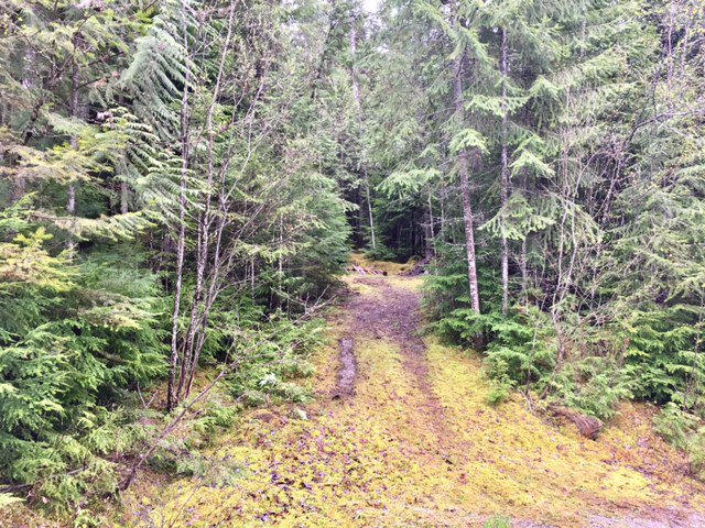 Photo 26: Photos: 3,4,6 Armstrong Road in Eagle Bay: Vacant Land for sale : MLS®# 10133907