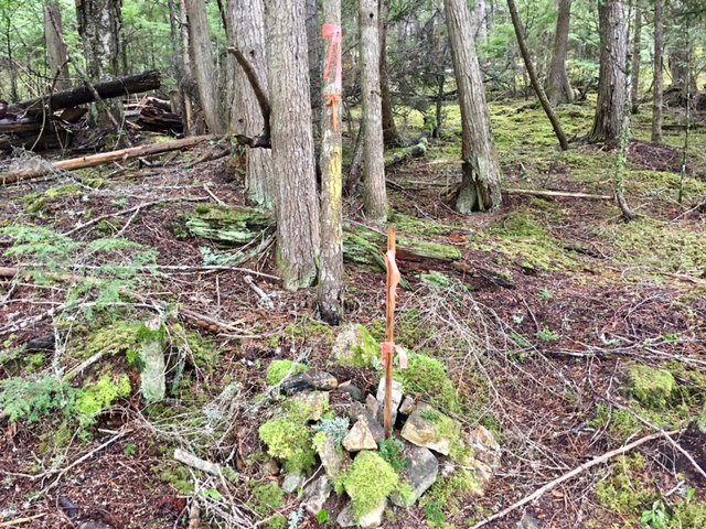 Photo 16: Photos: 3,4,6 Armstrong Road in Eagle Bay: Vacant Land for sale : MLS®# 10133907