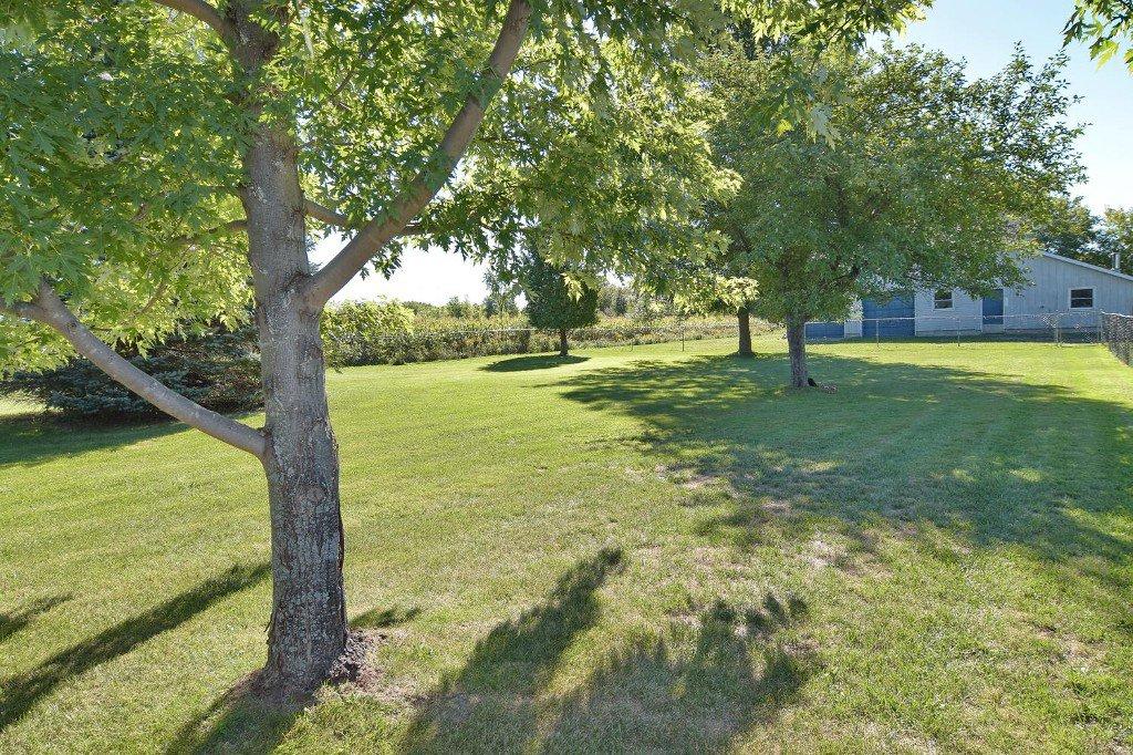 Photo 39: Photos: 641 Main Street in BEAVERTON: Brock Freehold for sale (Durham)  : MLS®# N3610346
