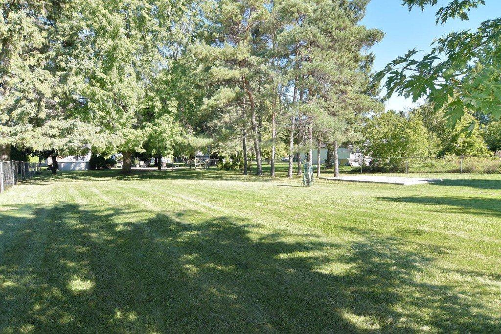 Photo 37: Photos: 641 Main Street in BEAVERTON: Brock Freehold for sale (Durham)  : MLS®# N3610346