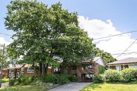 Photo 4: Photos: 1 Mangrove Road in Toronto: Rustic House (Bungalow-Raised) for sale (Toronto W04)  : MLS®# W2978109