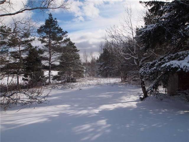 Photo 1: Photos: 529 Highway 47 in Uxbridge: Freehold for sale : MLS®# N3484604