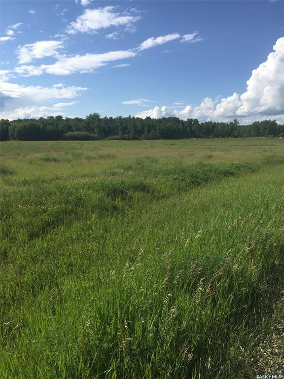 Main Photo: Schroepfer Land in Arborfield: Lot/Land for sale (Arborfield Rm No. 456)  : MLS®# SK827757
