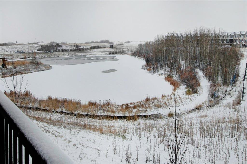 Lovely view of pond and environment reserve