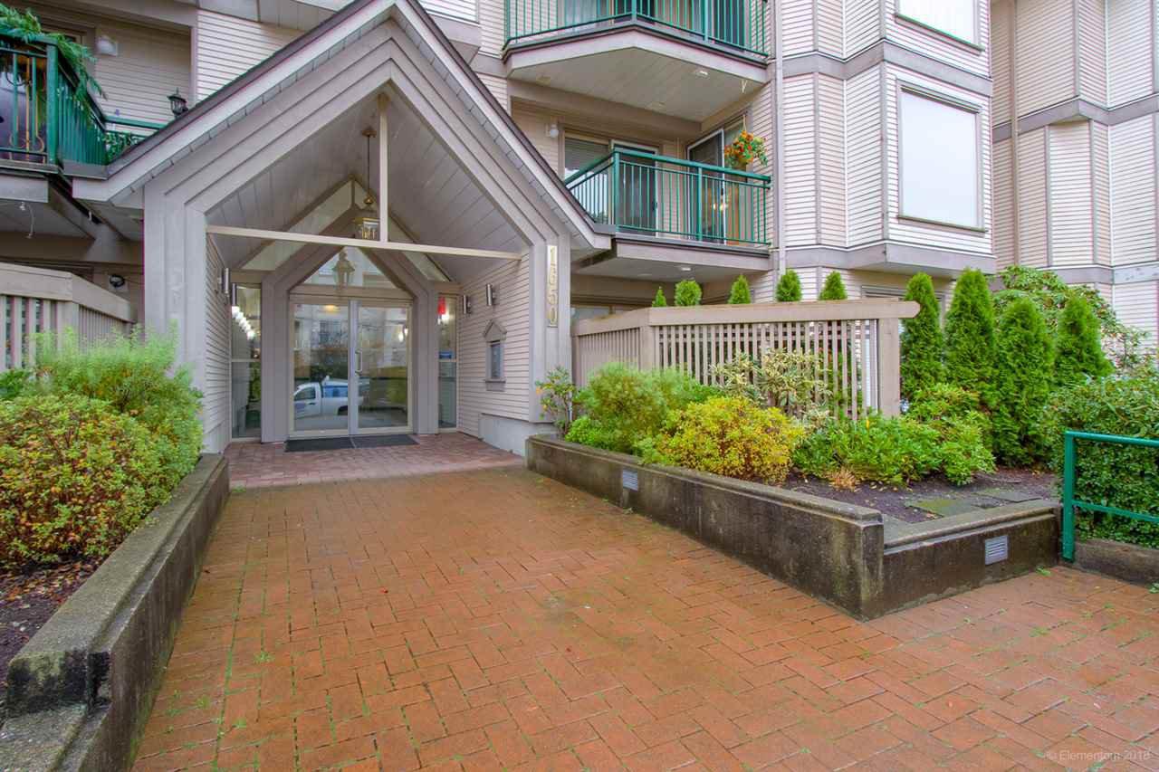 Main Photo: 212 1650 GRANT AVENUE in Port Coquitlam: Glenwood PQ Condo for sale : MLS®# R2319533