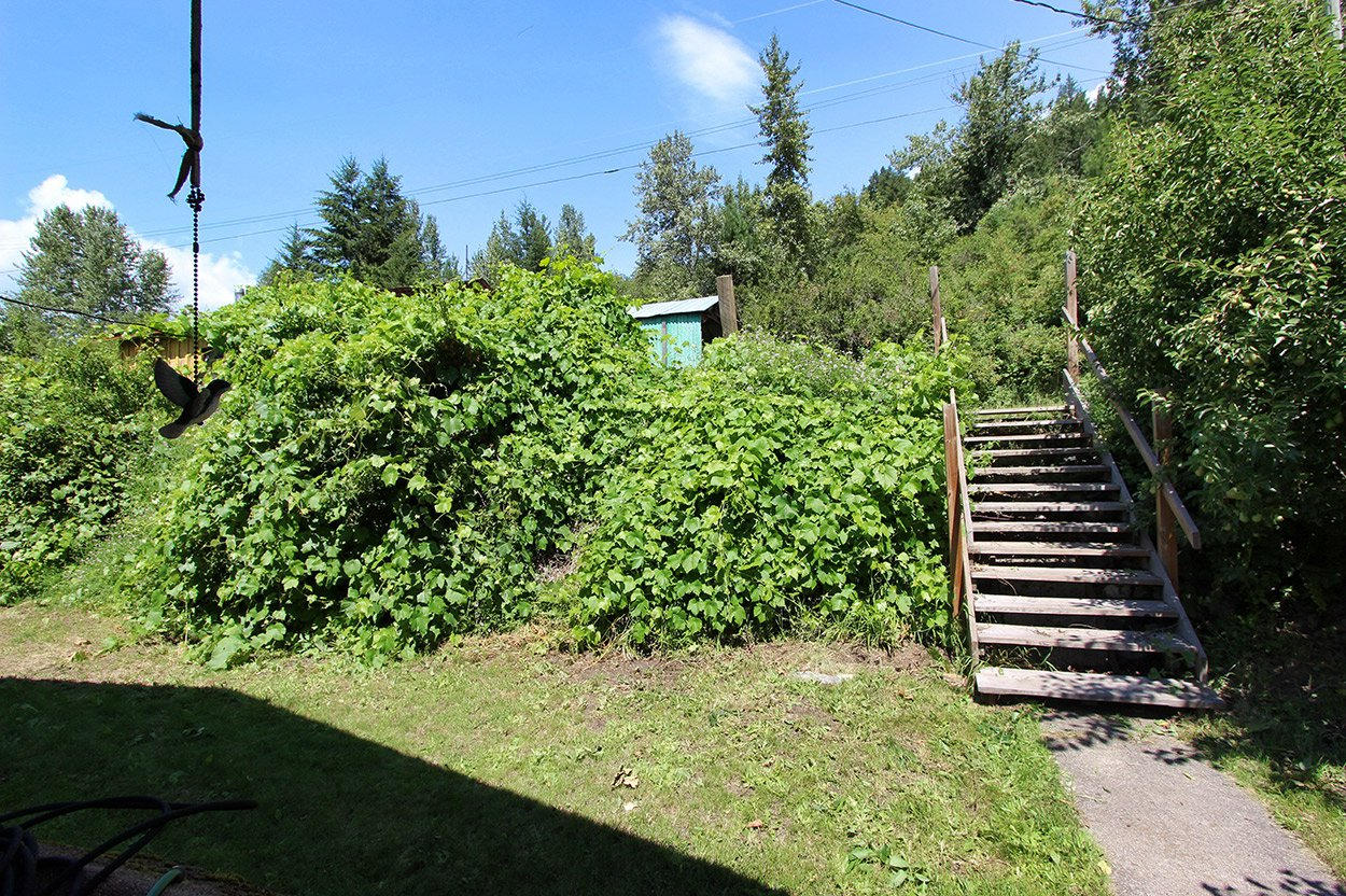 Photo 8: Photos: 2181 Chief Atahm Drive: Adams Lake House for sale (Shuswap)  : MLS®# 10179322