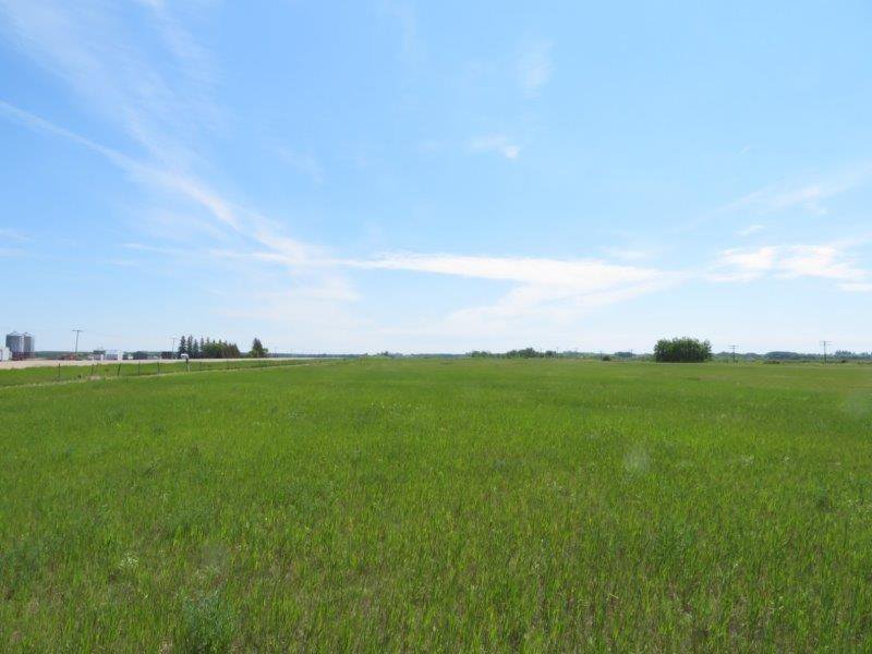 Main Photo: 0 Dugald Road in Dugald: RM Springfield Vacant Land for sale (R04)  : MLS®# 1930019