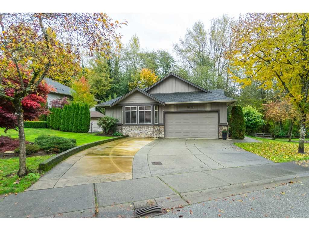 "Main Photo: 11834 249A Street in Maple Ridge: Websters Corners House for sale in ""Lee Bridge Estates"" : MLS®# R2413889"