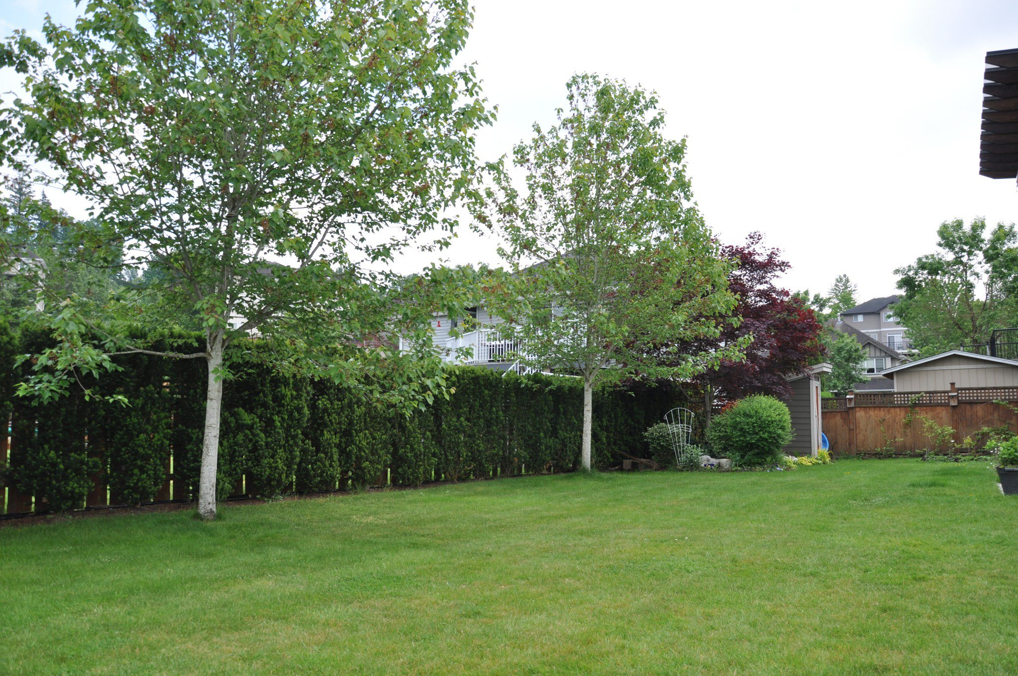 Photo 28: Photos: 4076 Channel St. in Abbotsford: Abbotsford East House for rent
