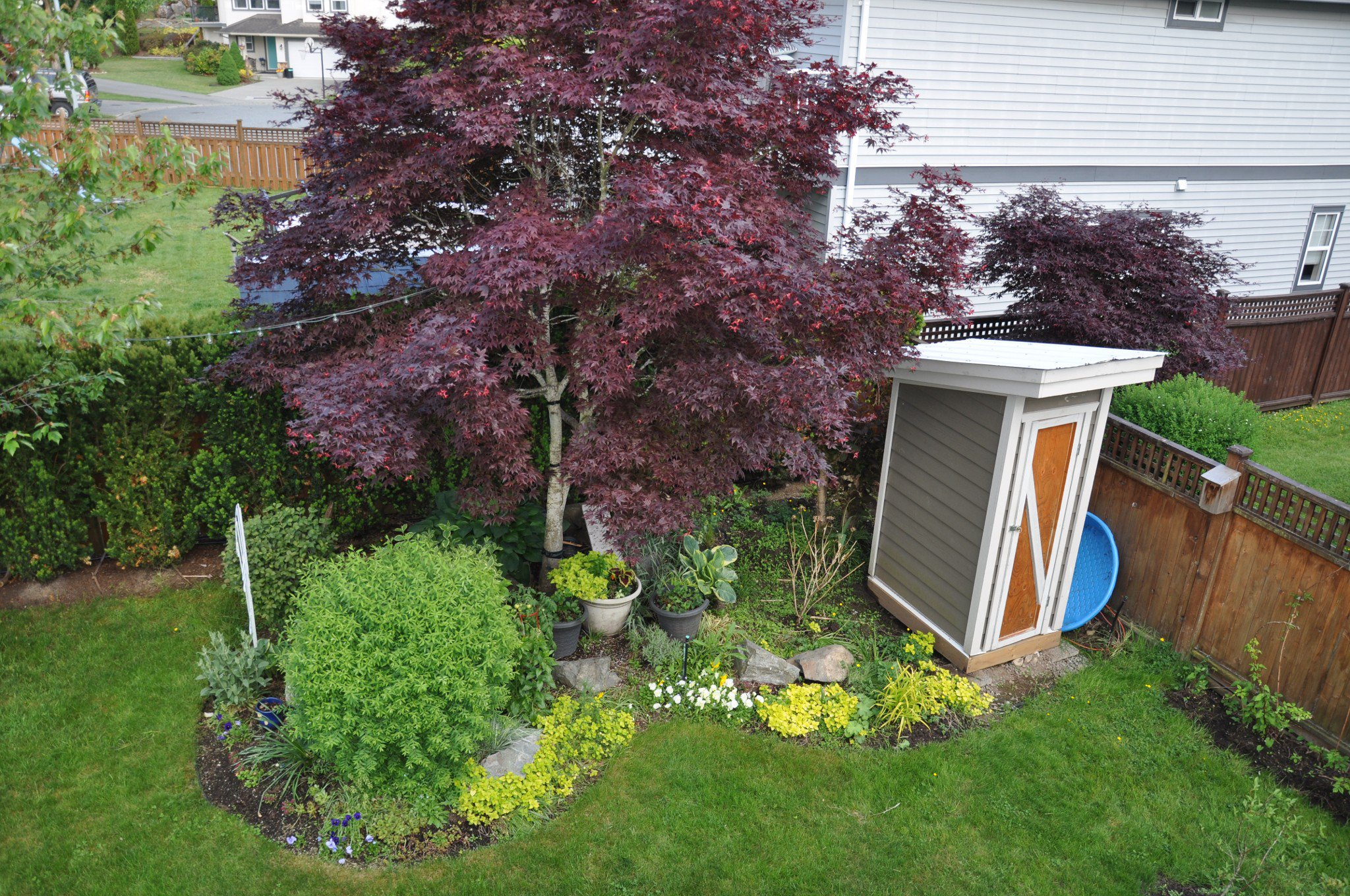 Photo 22: Photos: 4076 Channel St. in Abbotsford: Abbotsford East House for rent