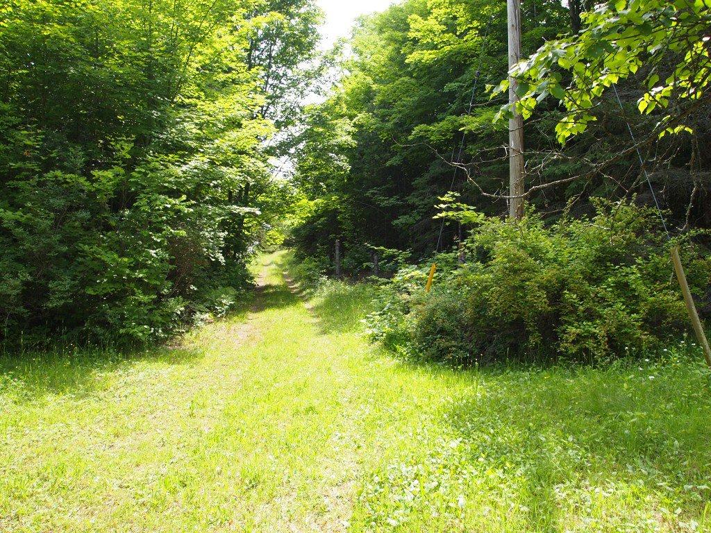 Photo 8: Photos: 1937 Highway 48 (Portage) Road in KAWARTHA LAKES: Rural Bexley Freehold for sale (Kawartha Lakes)  : MLS®# X2927206/1443326