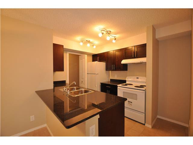 Main Photo: #312 530 Watt BV SW in Edmonton: Zone 53 Condo for sale : MLS®# E3366063