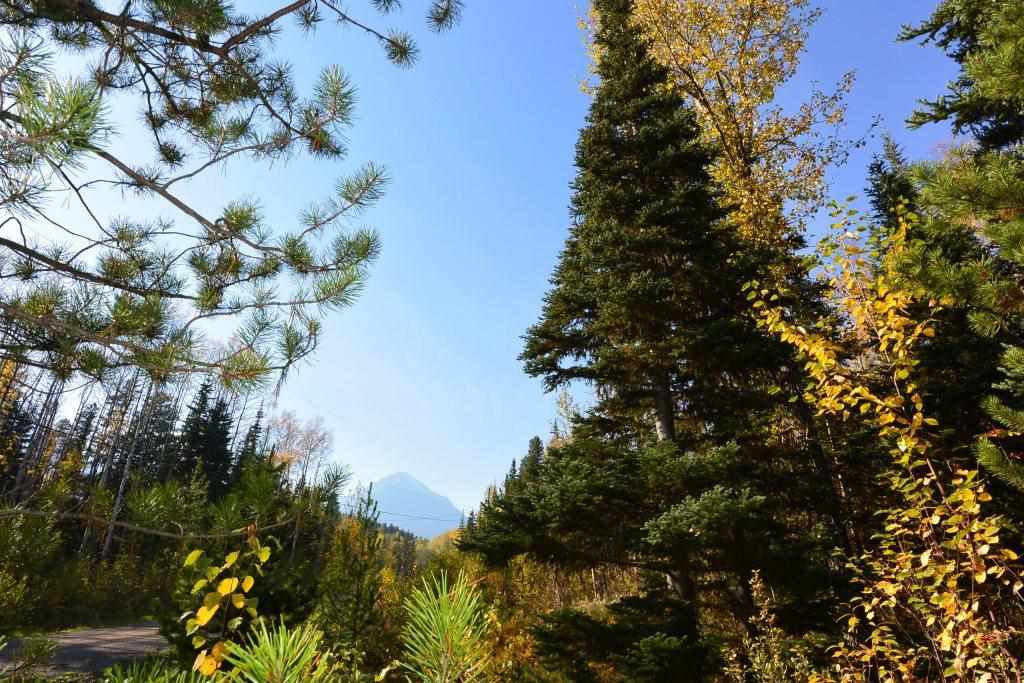 """Main Photo: Lot 8 GLACIER VIEW Road in Smithers: Smithers - Rural Land for sale in """"Silvern Estates"""" (Smithers And Area (Zone 54))  : MLS®# R2410914"""