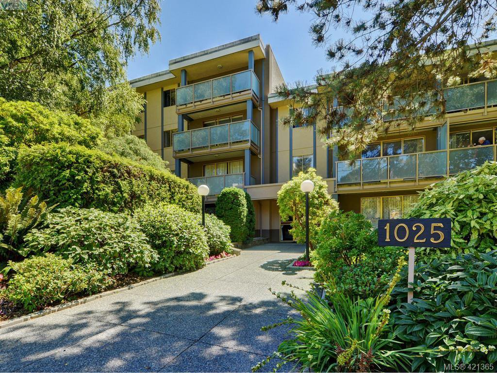 Main Photo: 125 1025 Inverness Road in VICTORIA: SE Quadra Condo Apartment for sale (Saanich East)  : MLS®# 421365