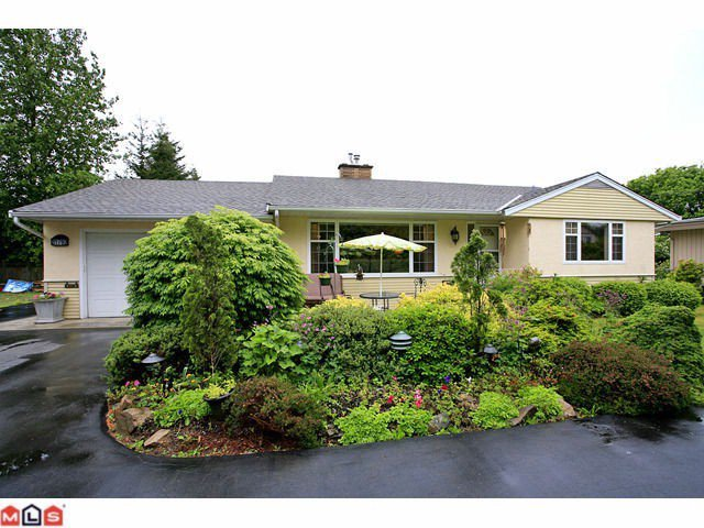 Main Photo: 31792 Old Yale Rd in Abbotsford: Abbotsford West House for rent