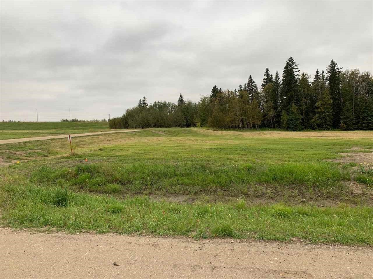 Main Photo: 17 26425 TWP RD 532 A: Rural Parkland County Rural Land/Vacant Lot for sale : MLS®# E4214412
