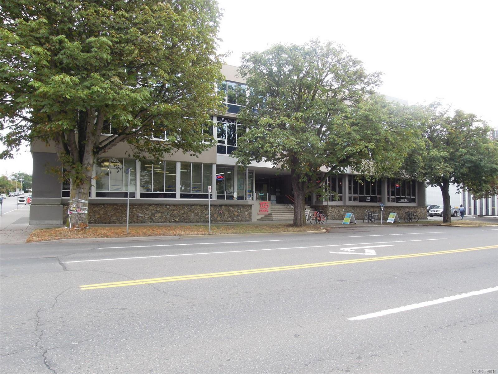 Main Photo: 103 1175 Cook St in : Vi Downtown Retail for lease (Victoria)  : MLS®# 859816