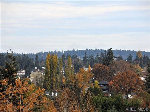 Photo 19: Photos: 716 Jasmine Avenue in VICTORIA: SW Marigold Residential for sale (Saanich West)  : MLS®# 330126