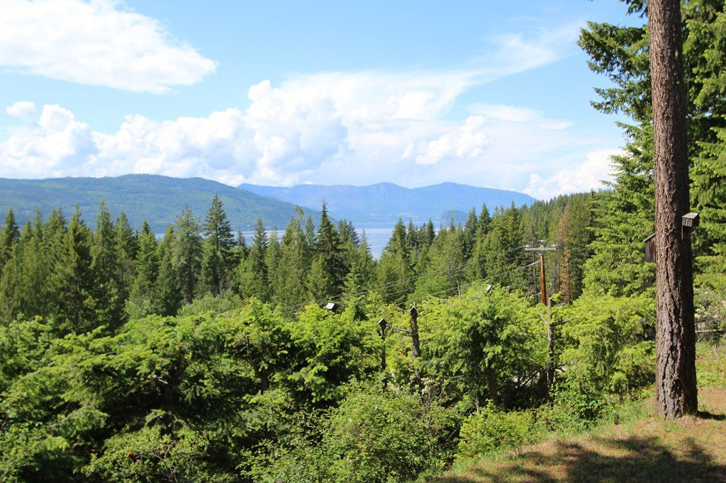Photo 30: Photos: 6095 Squilax Anglemomt Road in Magna Bay: North Shuswap House with Acreage for sale (Shuswap)