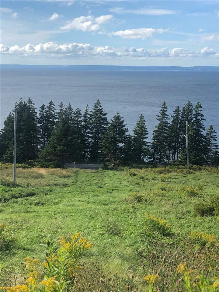 Main Photo: 81 Lakeshore Drive in Irish Cove: 207-C. B. County Vacant Land for sale (Cape Breton)  : MLS®# 202017903