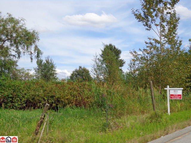 Main Photo: 12921 115A Avenue in Surrey: Bridgeview Land for sale (North Surrey)  : MLS®# F1311912