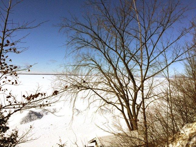 Photo 2: Photos: Private Lake Simcoe Waterfront