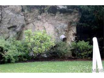 Photo 2: Photos: 105 1371 Hillside Ave in VICTORIA: Vi Oaklands Condo for sale (Victoria)  : MLS®# 315645