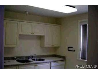 Photo 4: Photos: 105 1371 Hillside Ave in VICTORIA: Vi Oaklands Condo for sale (Victoria)  : MLS®# 315645