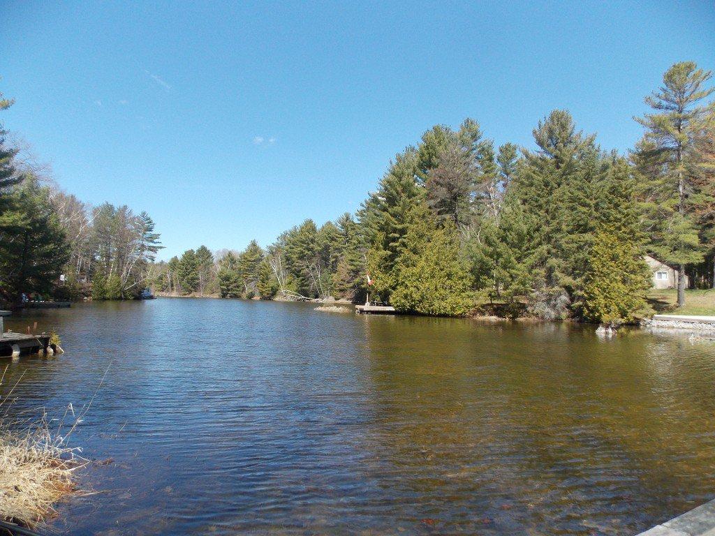 Photo 3: Photos: 173 Stanley Road in KAWARTHA LAKES: Rural Eldon Freehold for sale (Kawartha Lakes)  : MLS®# X3276806