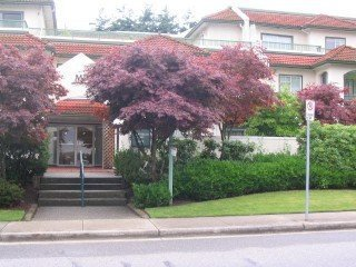 Main Photo: 109 1447 Best Street in White Rock: Home for sale : MLS®# F2512540
