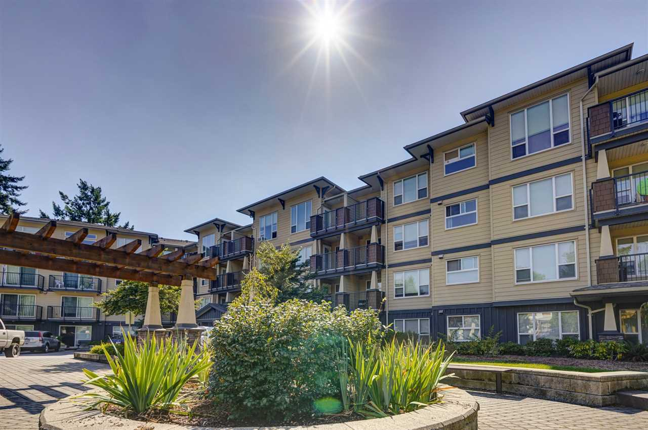 "Main Photo: 116 2565 CAMPBELL Avenue in Abbotsford: Central Abbotsford Condo for sale in ""Abacus"" : MLS®# R2487241"