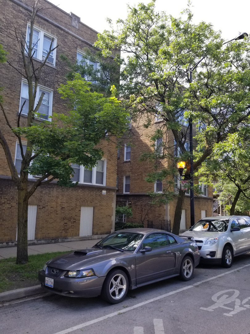 Main Photo: 4042 SOUTHPORT Avenue Unit 3W in CHICAGO: CHI - Lake View Rentals for rent ()  : MLS®# 10460700