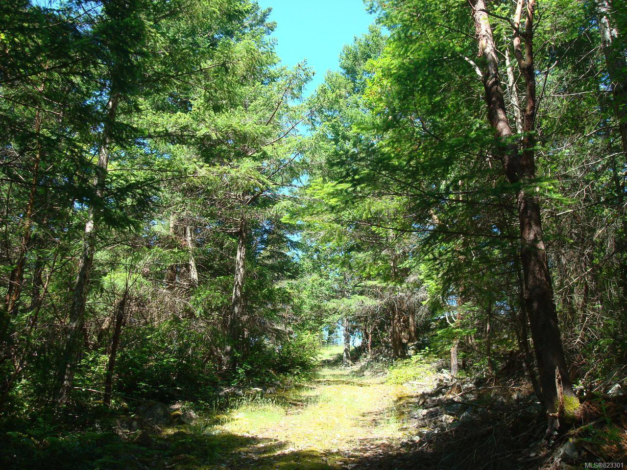 Photo 3: Photos: SEC 27 Oben Rd in LASQUETI ISLAND: Isl Lasqueti Island House for sale (Islands)  : MLS®# 823301