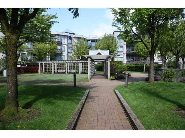 Main Photo: 206 2978 BURLINGTON Drive in Coquitlam: North Coquitlam Condo for sale : MLS®# V1004547