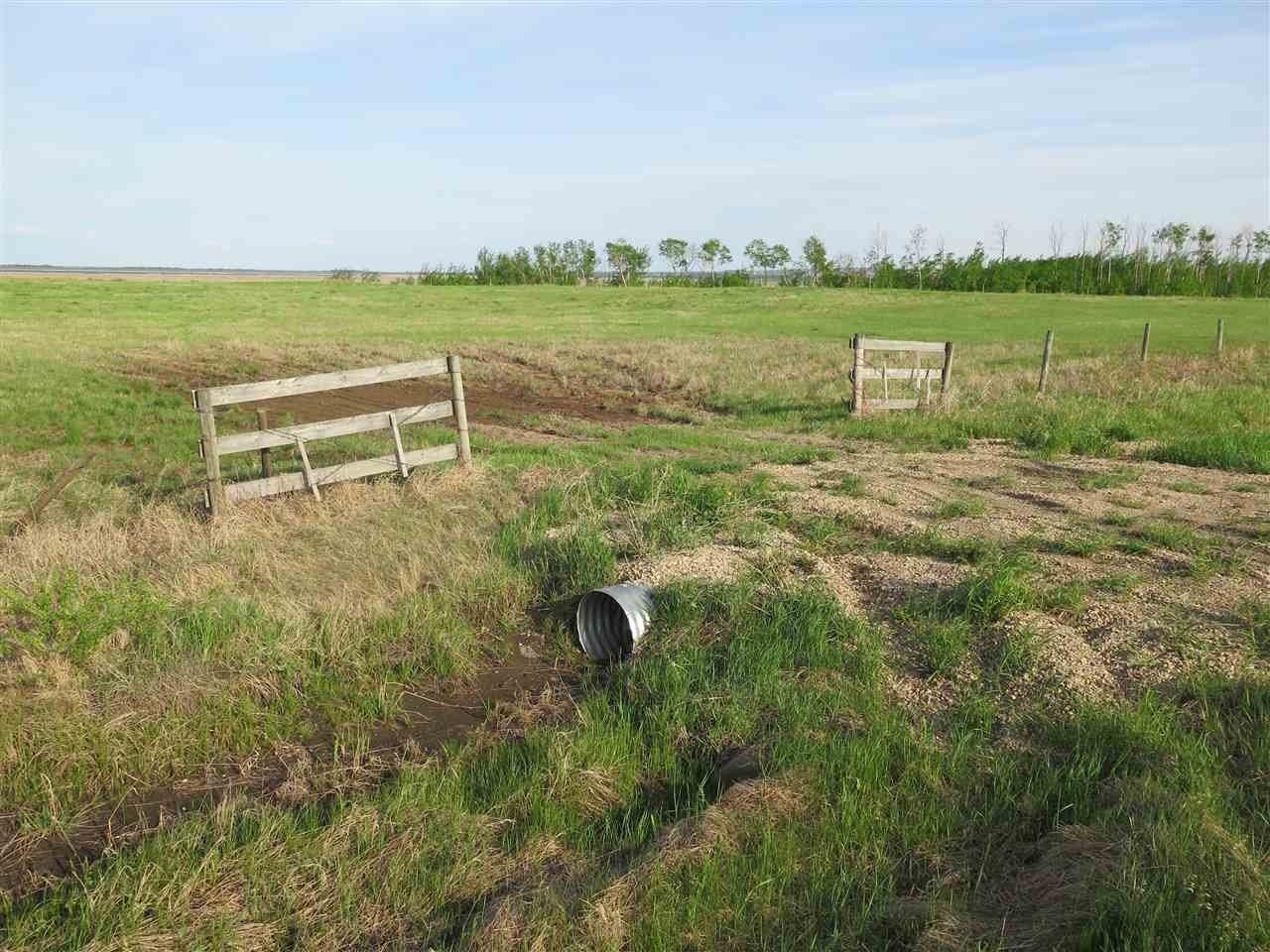 Main Photo: 45063B TWP RD 734 (KLESKUN WEST): Rural Grande Prairie County Rural Land/Vacant Lot for sale : MLS®# E4190065