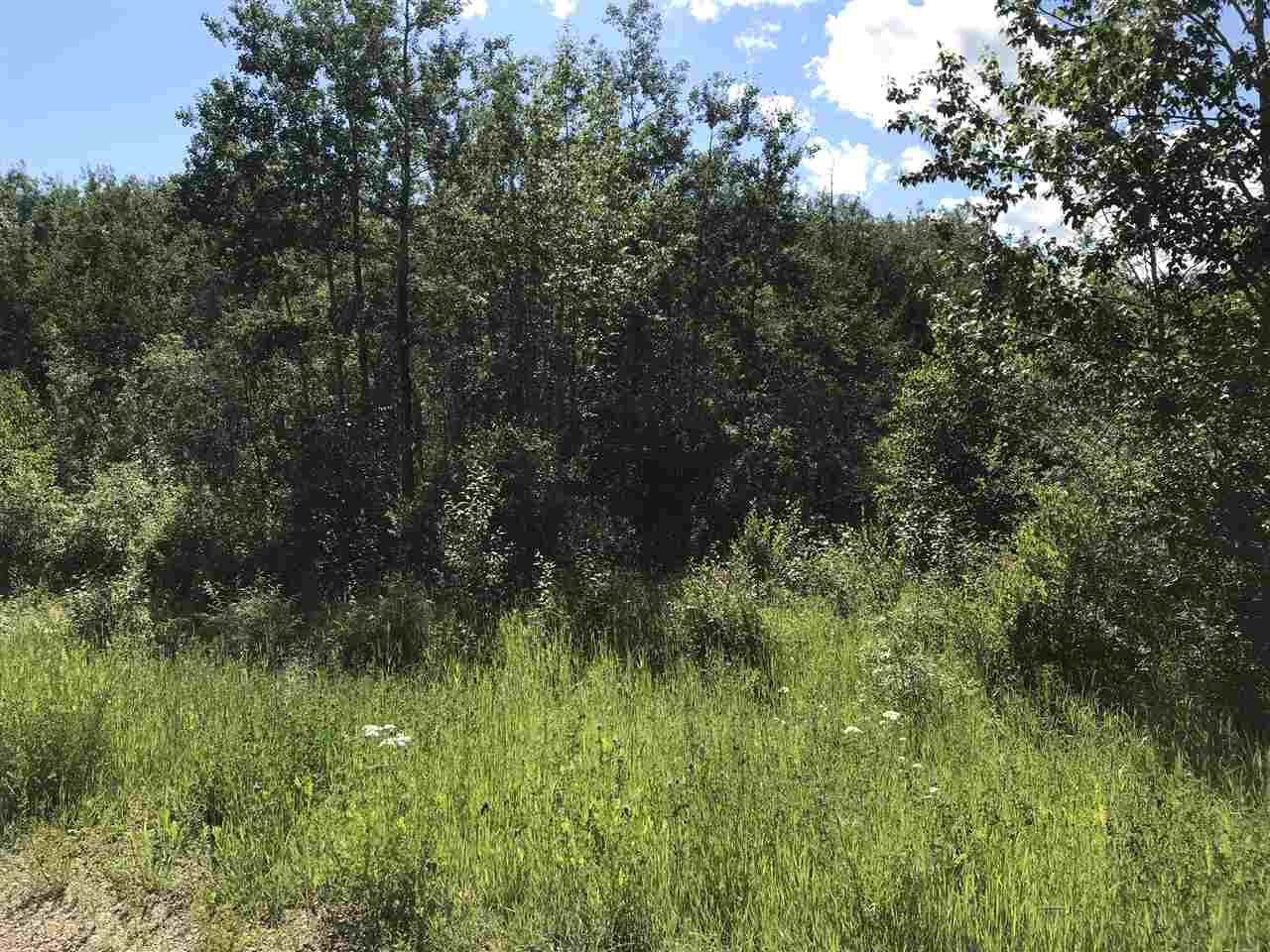 Main Photo: RR60 Two Rd 552: Rural Lac Ste. Anne County Rural Land/Vacant Lot for sale : MLS®# E4205797