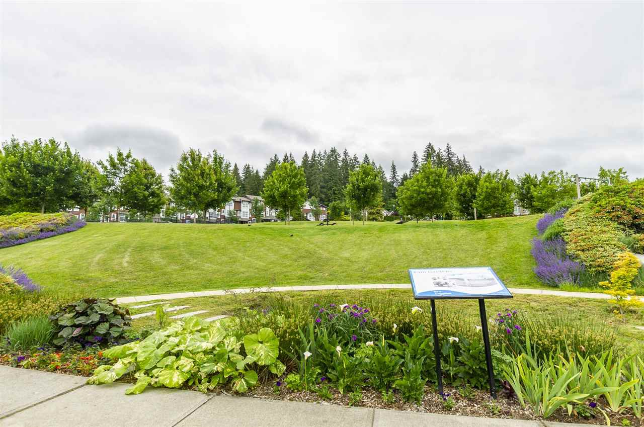 Photo 19: Photos: 52 1338 HAMES CRESCENT in Coquitlam: Burke Mountain Townhouse for sale : MLS®# R2279478