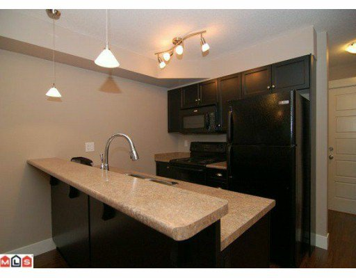 Photo 2: Photos: #211 30525 Cardinal Ave. in Abbotsford: Abbotsford West Condo for rent