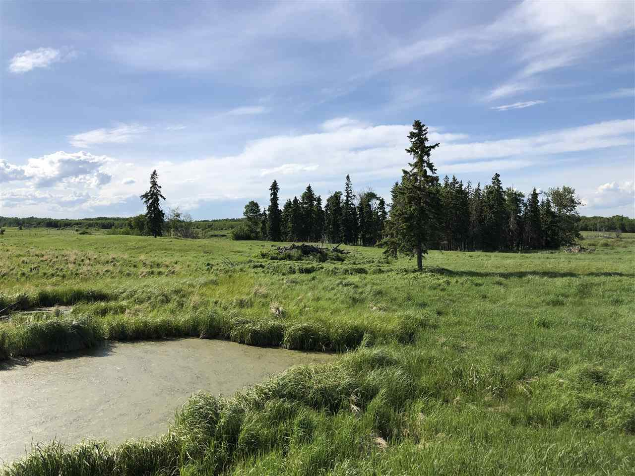 Main Photo: 55506 RGE RD  61: Rural Lac Ste. Anne County Rural Land/Vacant Lot for sale : MLS®# E4201695