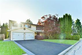 Main Photo: 12141 234th in Maple Ridge: House for sale : MLS®# R2269850