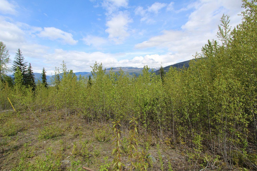 Main Photo: Lot 81 Sunset Drive: Eagle Bay Land Only for sale (Shuswap)  : MLS®# 10186644