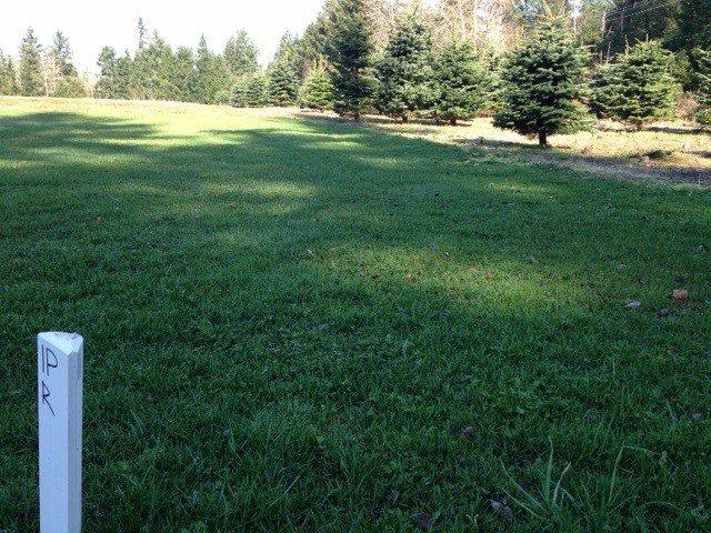 Main Photo: # LT.11 23712 56TH AV in Langley: Salmon River Land for sale : MLS®# F1407636