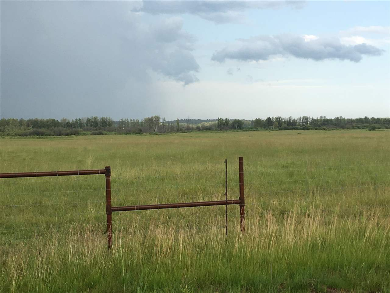 Main Photo: Range Road 81: Rural Brazeau County Rural Land/Vacant Lot for sale : MLS®# E4168466