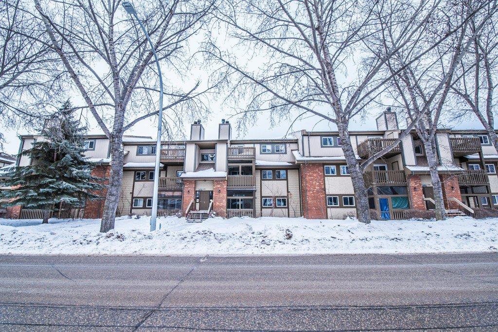 Main Photo: 203 491 Mandalay Drive in Winnipeg: Maples Condominium for sale (4H)  : MLS®# 1701517