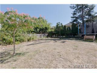 Photo 5: Photos: 1341/1343 Balmoral in : Vi Fernwood Revenue Duplex for sale (Victoria)  : MLS®# 368642